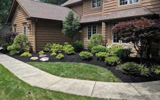 Landscape Installation Services