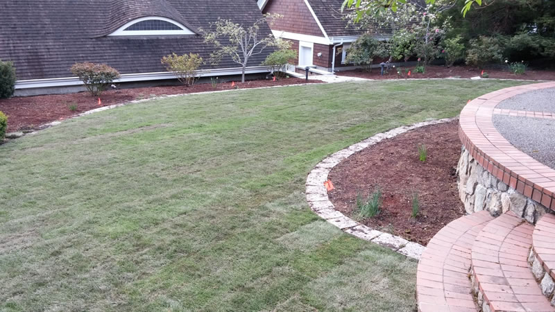 New Lawn Installations